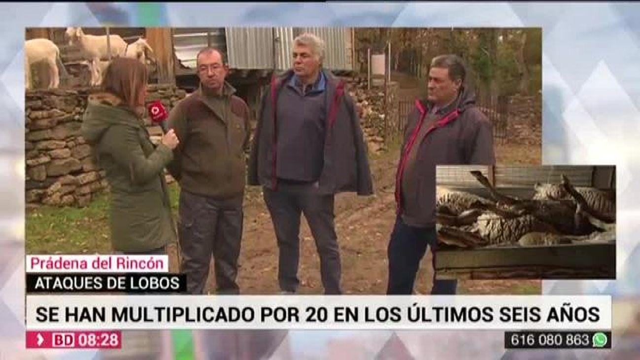 Buenos Días Madrid 26.11.2019 (8.00 - 9.00)