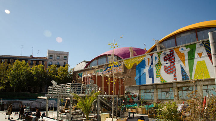 Los huertos urbanos, ¿moda o futuro?