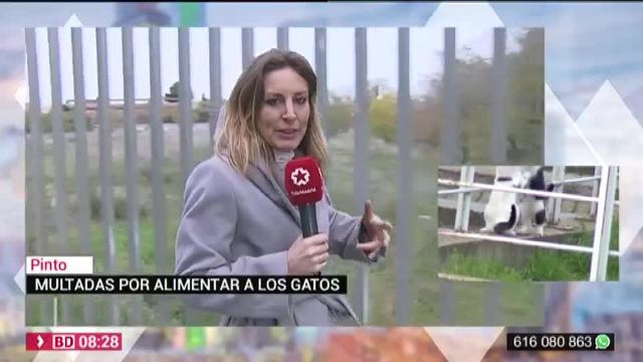 Buenos Días Madrid 29.11.2019 (8.00 - 9.00)