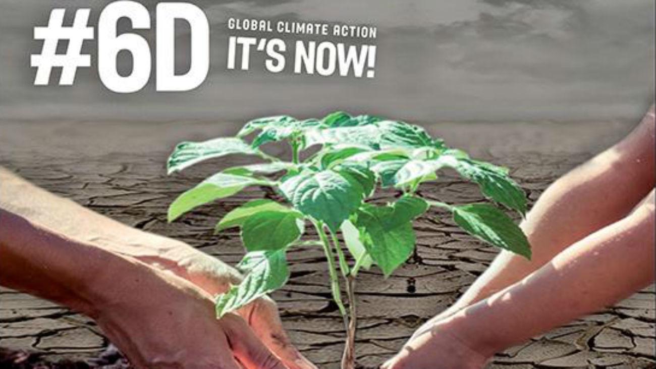 Pinto plantará 1.000 árboles