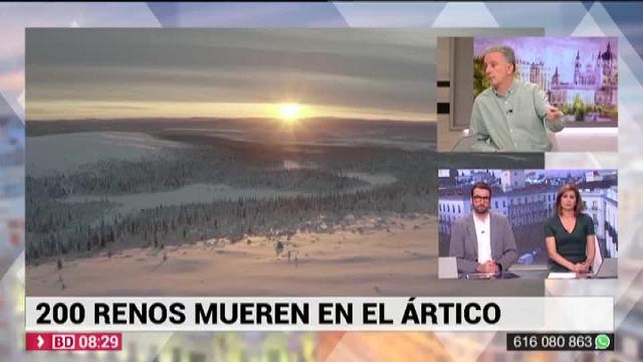 Buenos Días Madrid 12.12.2019