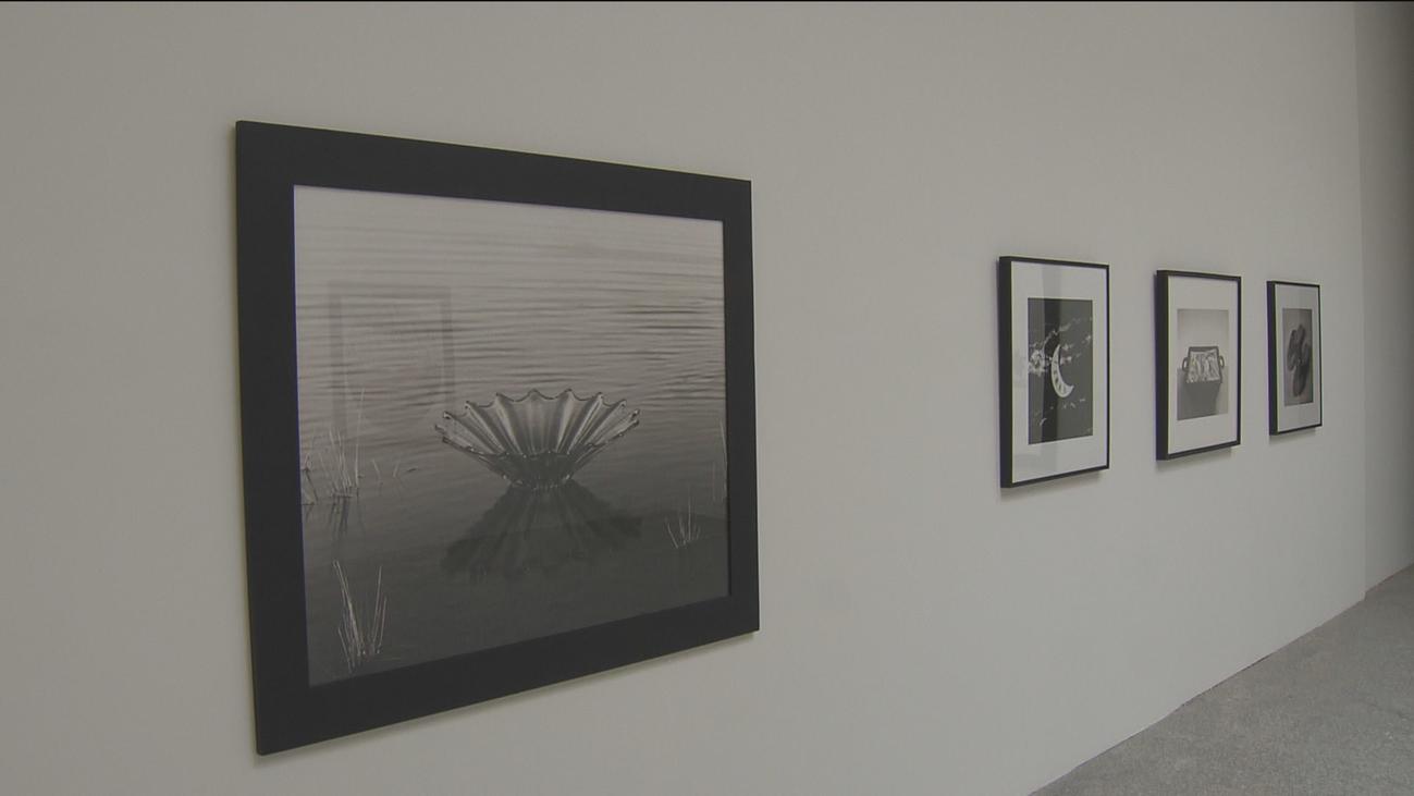 Chema Madoz presenta su exposición fotográfica en el Jardín Botánico