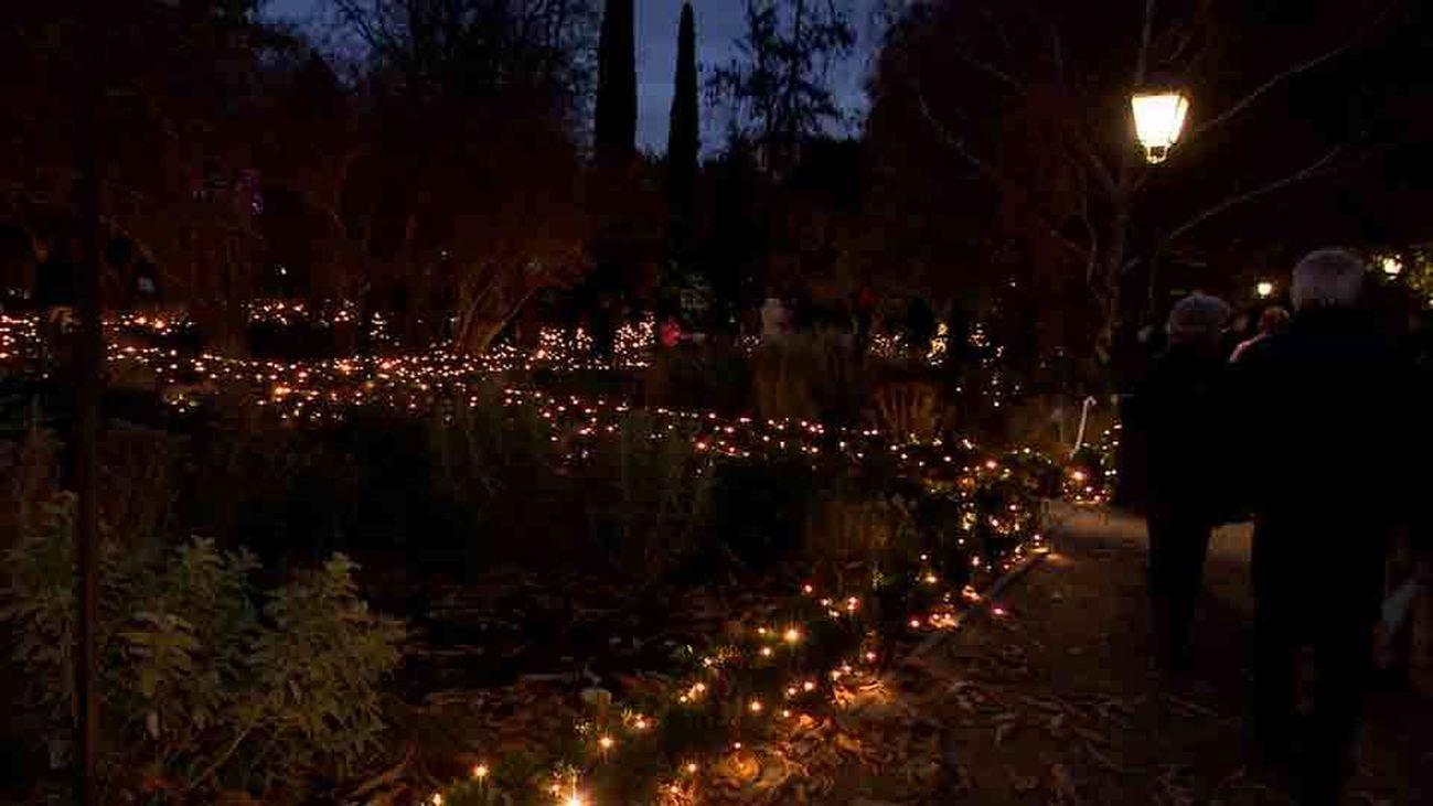 La Navidad enciende el Real Jardín Botánico