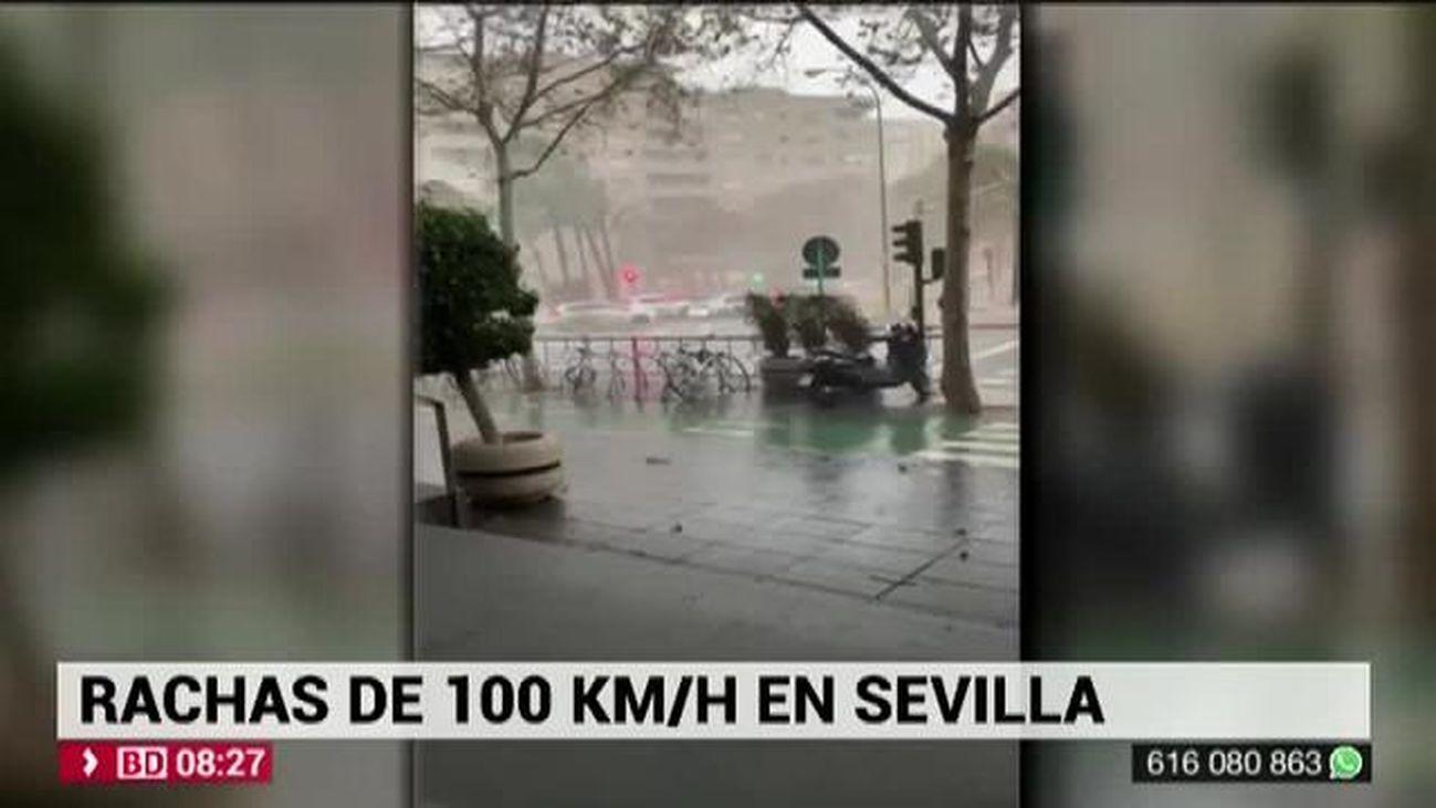 Buenos Días Madrid 17.12.2019 (8.00 - 9.00)