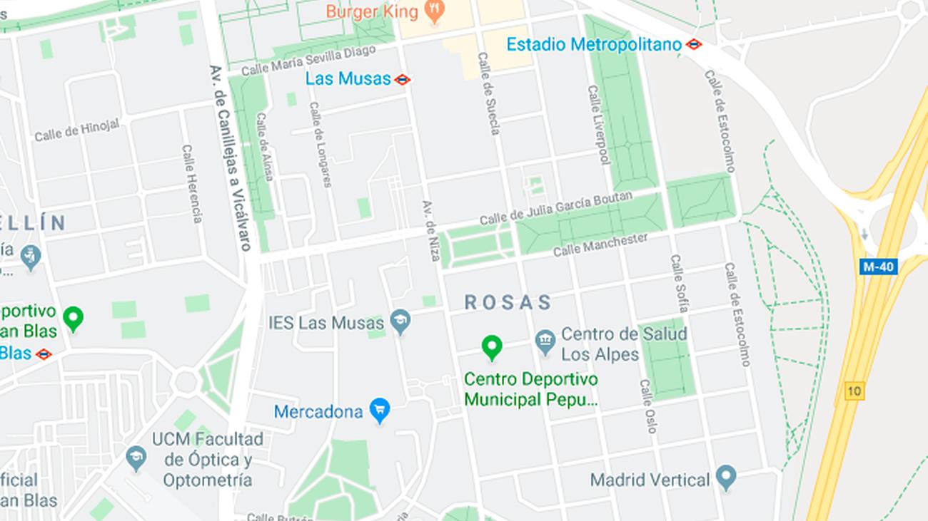 Intentan violar a una mujer al estar paseando a sus perros por San Blas