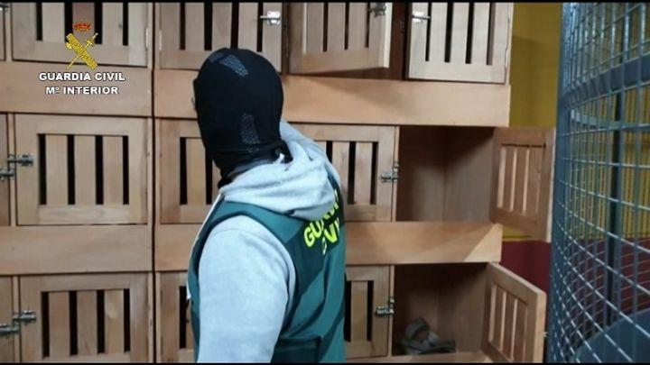 """La Guardia Civil desarticula una red delictiva dedicada a """"dar vuelcos"""" de hachís a otras organizaciones"""