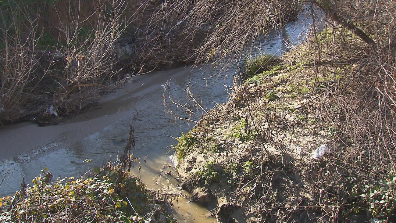 Ecologistas denuncian 20 años de vertidos en el Arroyo de la Vega