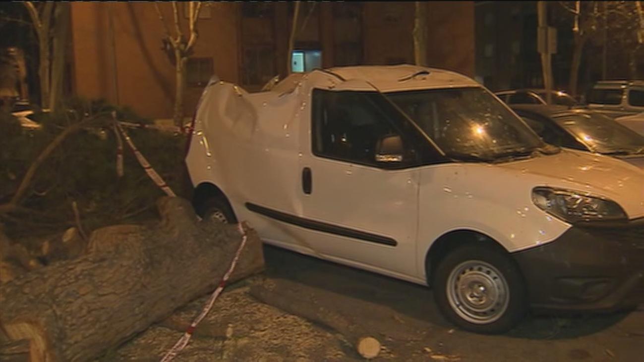 Los servicios de emergencias atienden en Madrid más de 500 avisos por viento