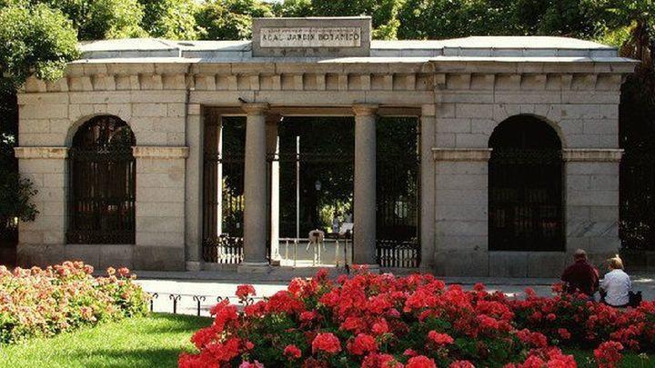 Descubriendo Madrid: El  Real Jardín  Botánico