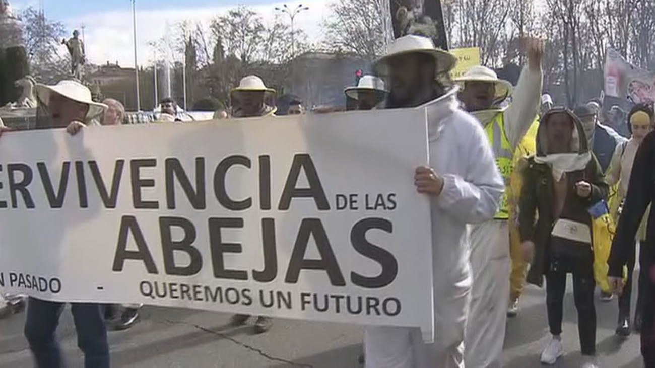 Los apicultores piden limitar el uso de pesticidas