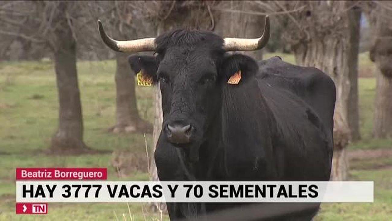 Telenoticias Fin de Semana 01.02.2020