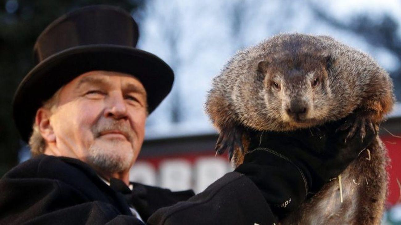La marmota Phil predice que la primavera llegará pronto a Estados Unidos