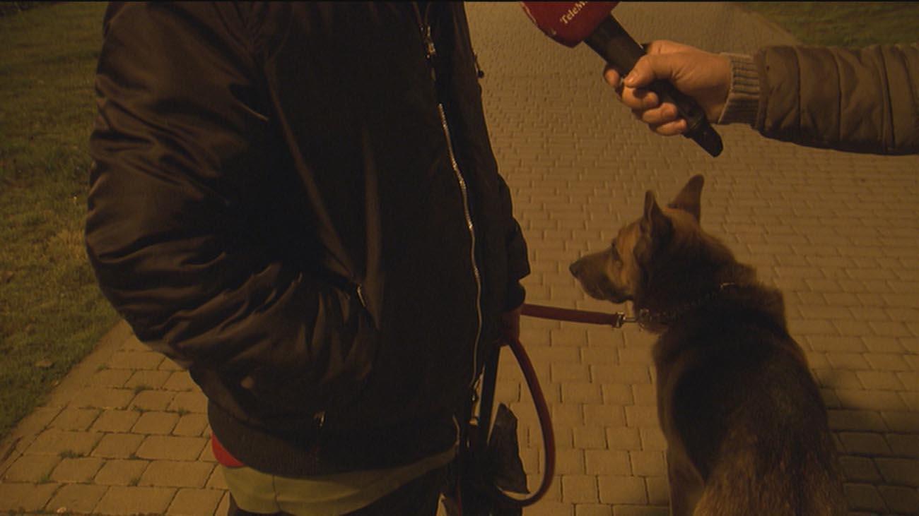 Heridas 7 menores en Leganés tras ser atacadas por dos perros