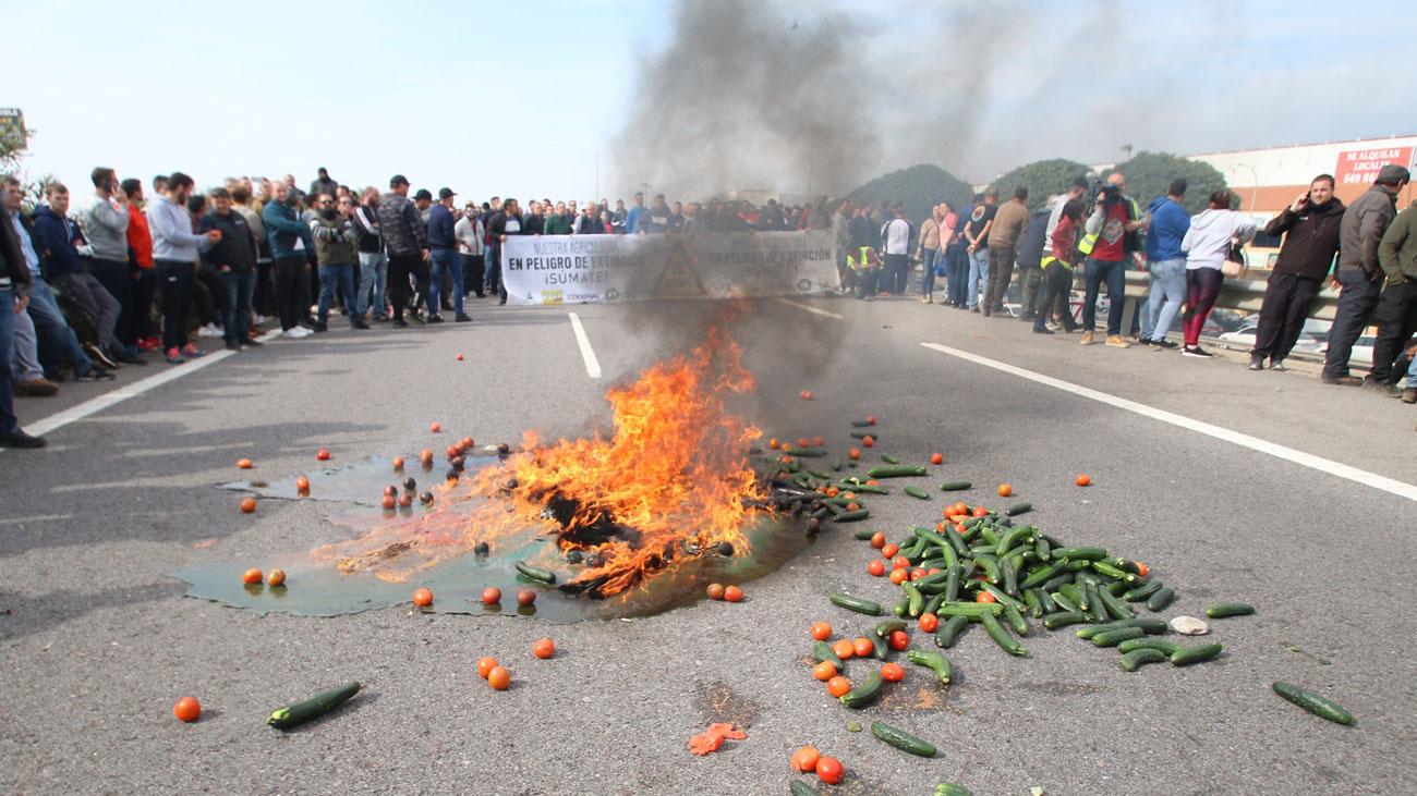 Las 'tractoradas' provocan cortes de carreteras en Extremadura y Andalucía