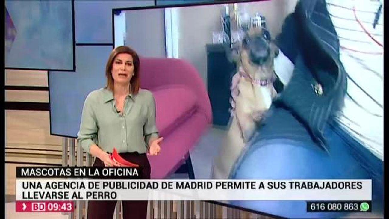 Buenos Días Madrid 20.02.2020 (9.00 - 10.30)