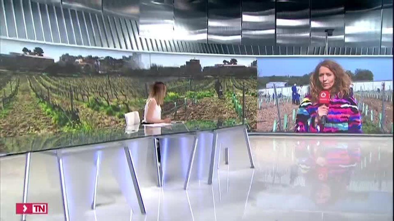 Telenoticias Fin de Semana 01.03.2020