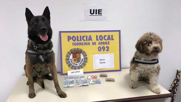 La Unidad Canina de Torrejón detiene a cinco individuos con hachís, cocaína y marihuana