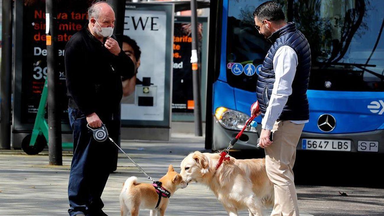 Dos personas pasean con sus mascotas