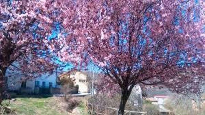 El invierno se despide este jueves con tiempo primaveral y más de 20 grados en el oeste