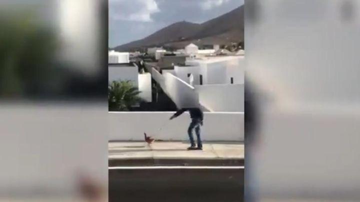 Denunciado por pasear una gallina durante el confinamiento