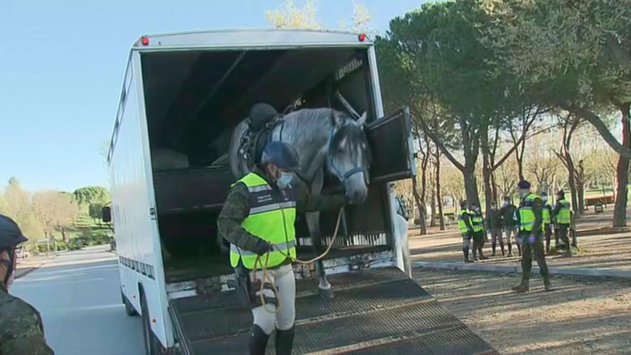 La Guardia Real patrulla a caballo y a pie en Madrid y colabora en la desinfección de residencias