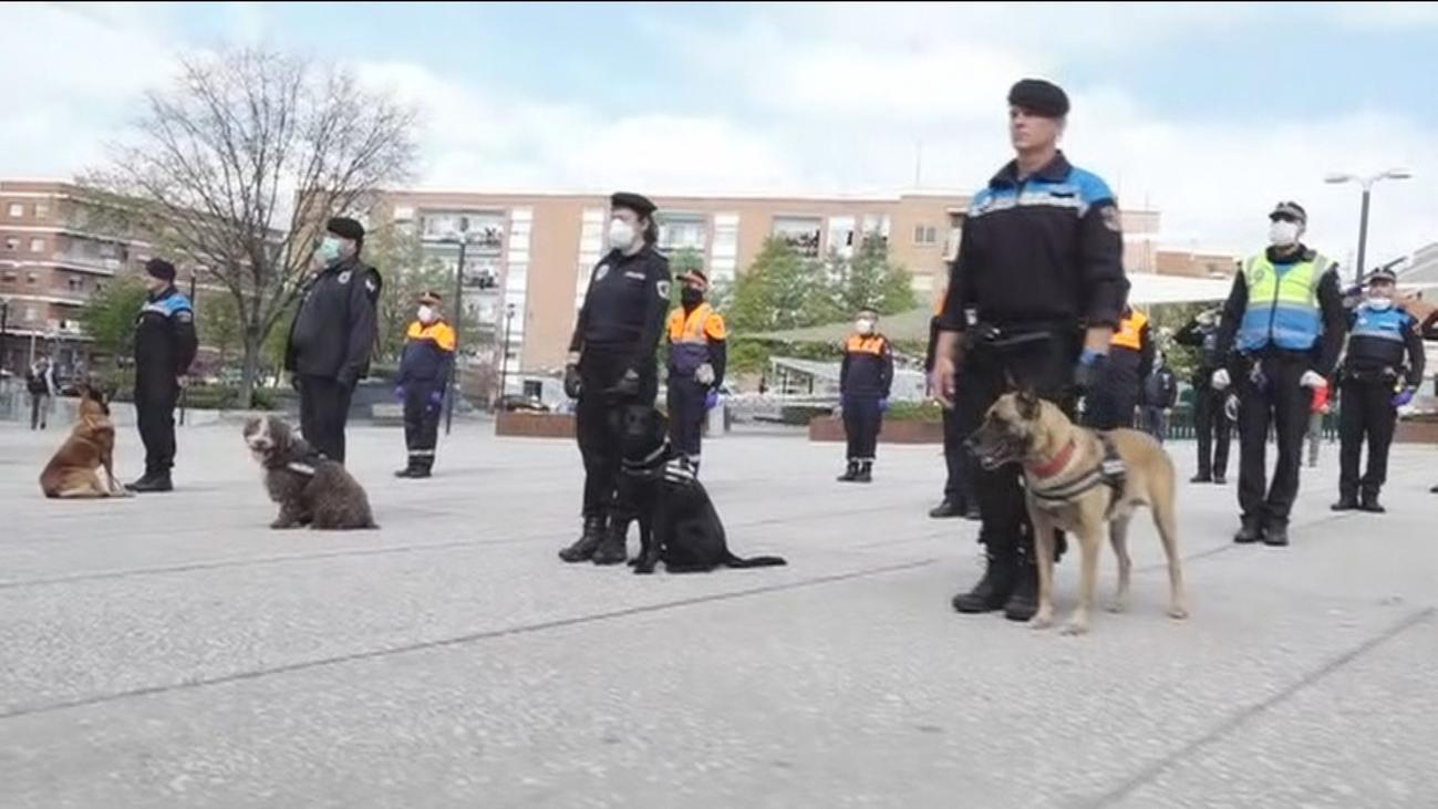 Exhibición canina sorpresa en Alcobendas