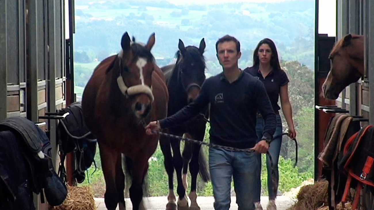 Las hípicas cuidan de los caballos sin tener ingresos y se ven abocadas a la ruina