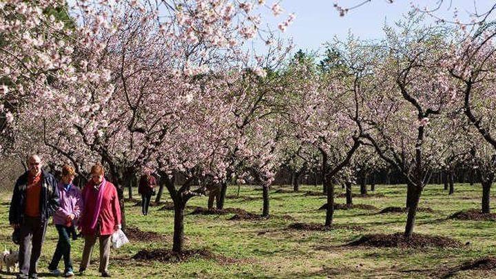 Madrid reabre parcialmente este sábado cuatro parques tras el paso de Filomena
