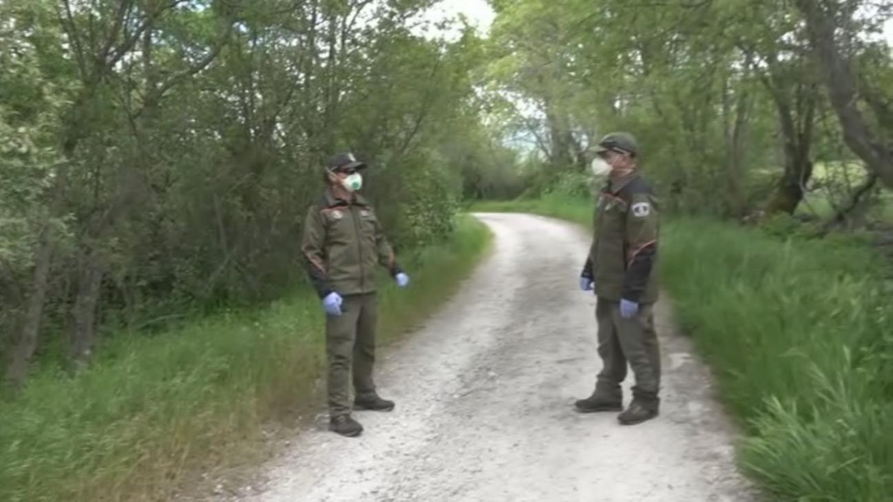 Los Agentes Forestales vigilan posibles infractores en la Sierra