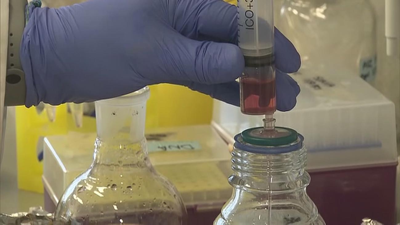 Madrid aumenta a 15.000 las pruebas PCR y contrata a más de 1.000 profesionales sanitarios