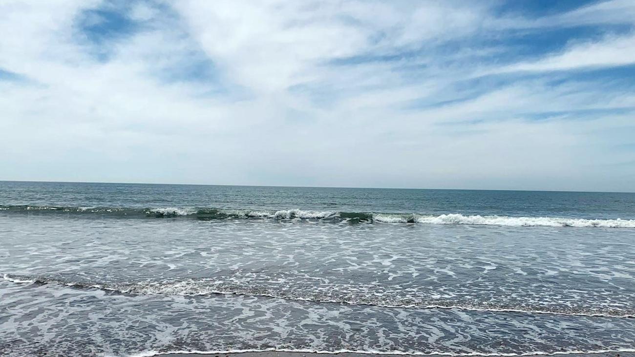 Abiertas al baño las playas andaluzas, menos Málaga y Granada, con control de aforo y distancia social