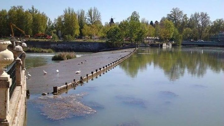 Piden una solución a los vertidos de aguas fecales al Tajo en Aranjuez
