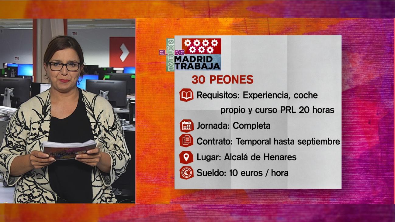 Se buscan 30 peones de obra para Alcalá de Henares