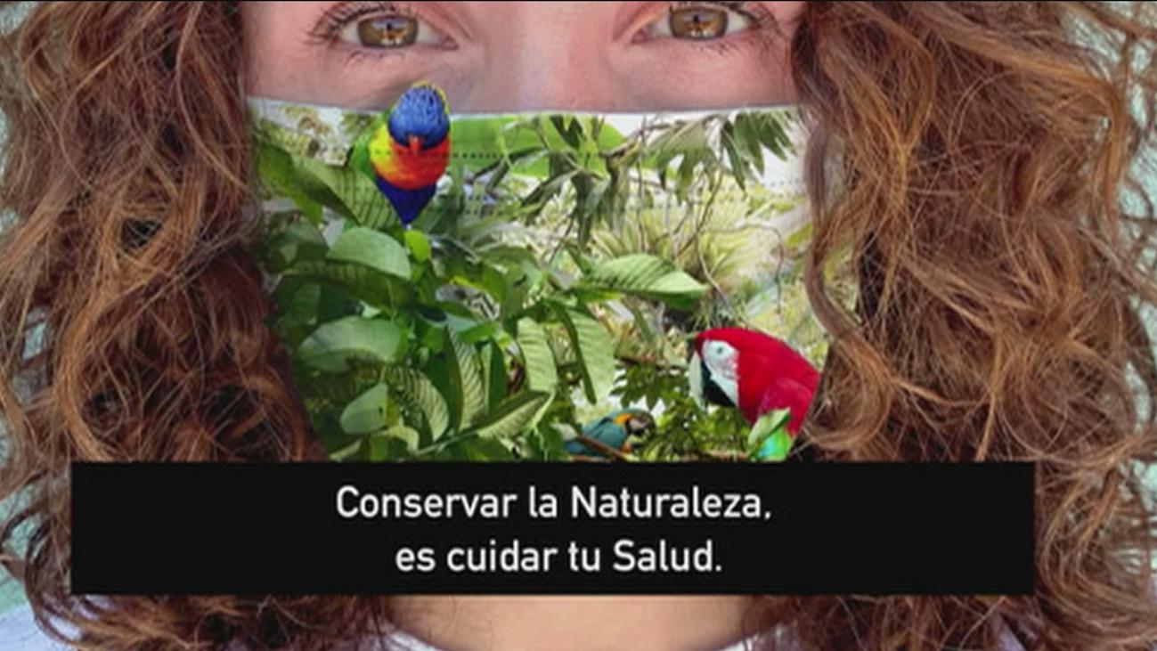 Un día Mundial del Medio Ambiente marcado por el covid-19