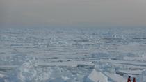 Descubren una bacteria en el Ártico que 'se come' al metano