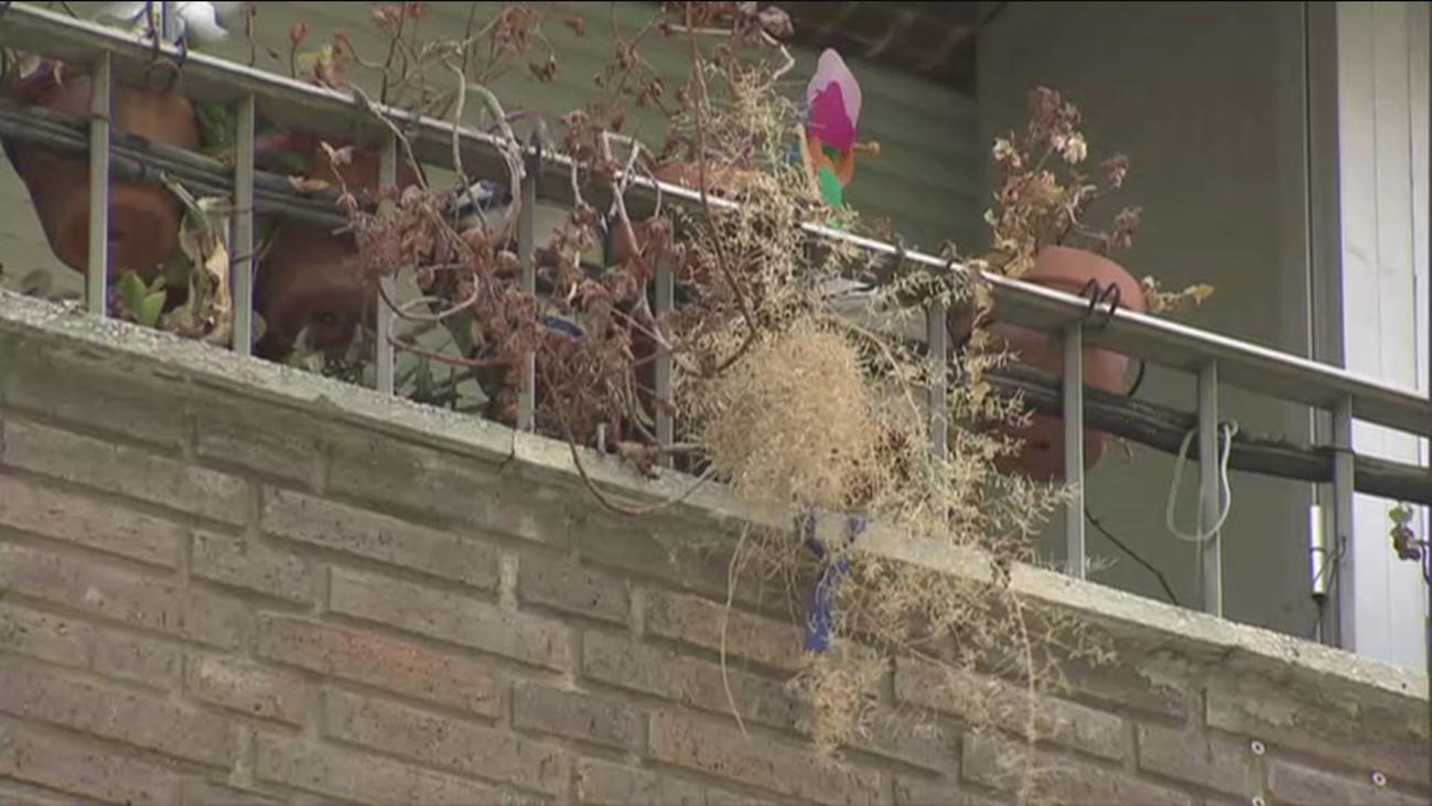 Las flores marchitas del balcón más triste de Madrid
