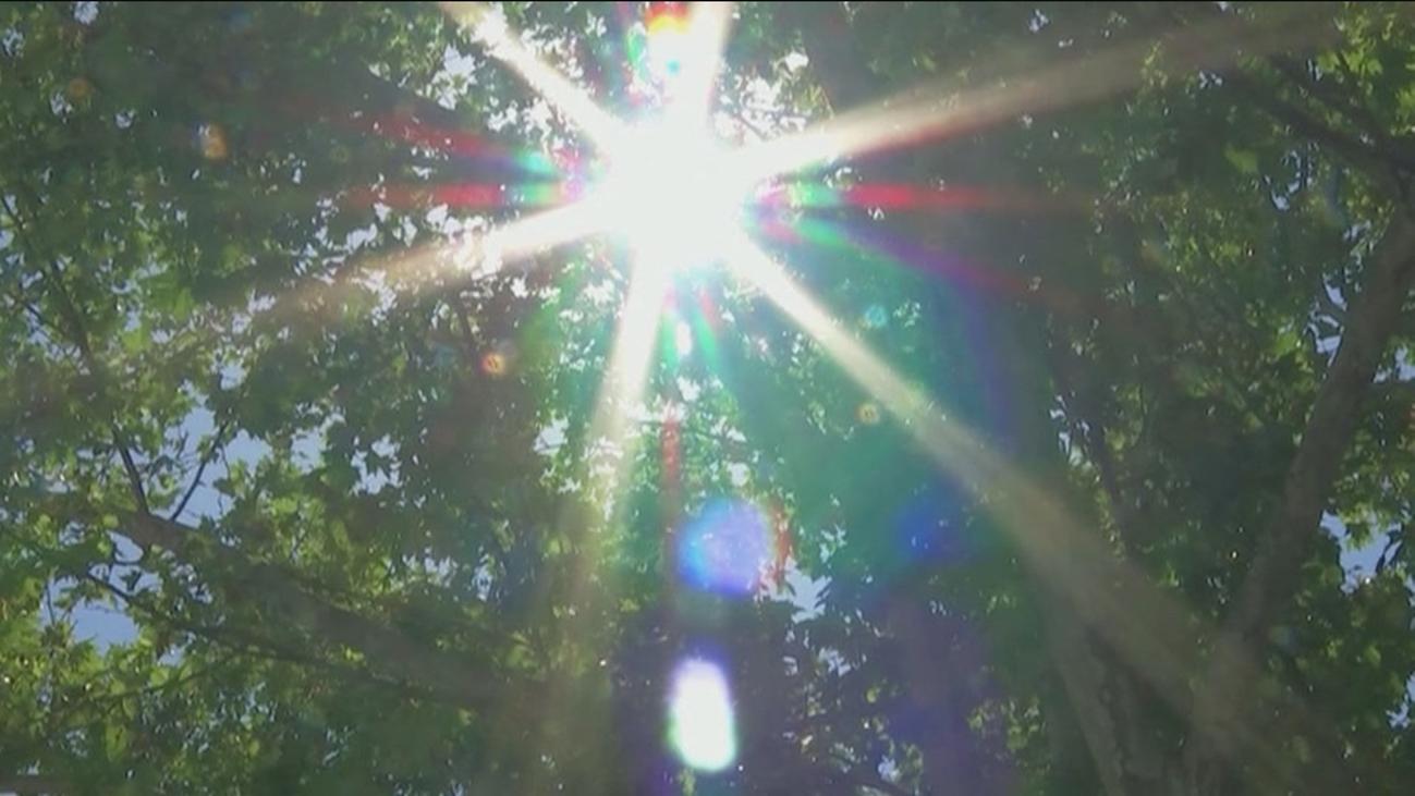 Hasta 28 provincias  estarán este martes en aviso por temperaturas de entre 33º y 40º
