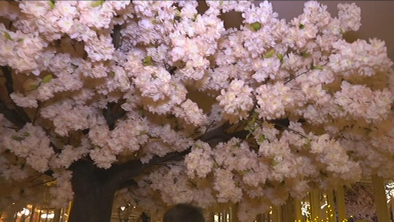Abre el restaurante más florido de Madrid