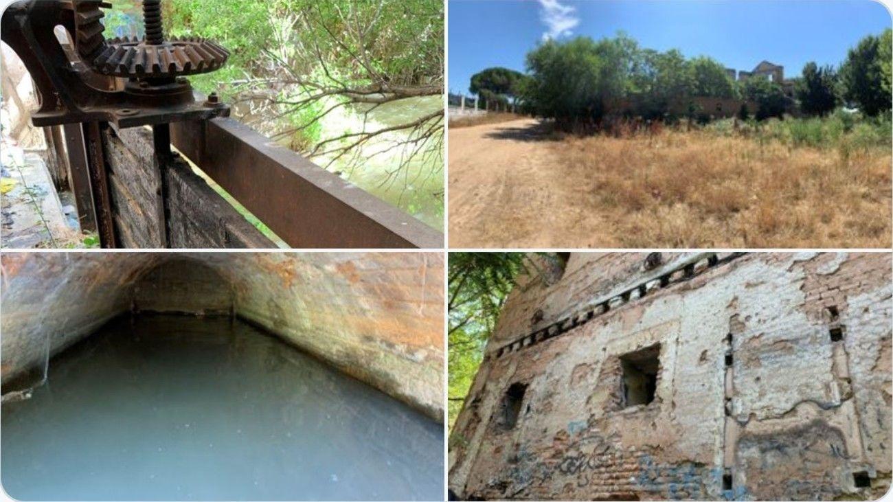 Proyecto de Renaturalización del río Henares