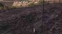 Incendio en Parque Coimbra, Móstoles