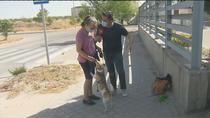 Ana y su perro ya pueden estar juntos y no dormir en la calle gracias al Samur Social