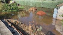 Denuncian los malos olores de una fosa séptica junto a sus casas, en Nuevo Baztán