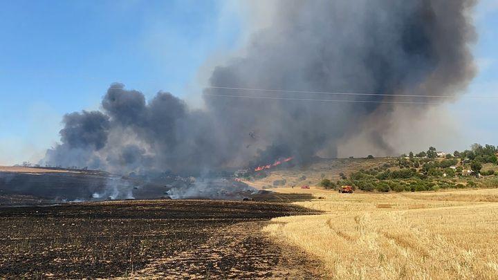 Desalojan dos urbanizaciones de Madrid y Guadalajara por un incendio de pastos y cereal  en  Valdepiélagos
