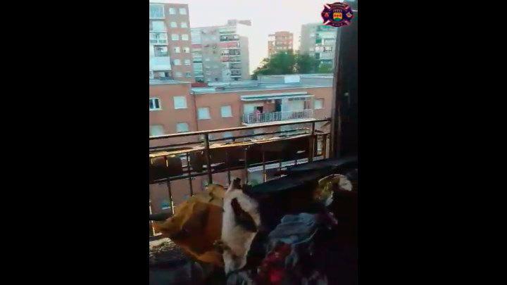 Un incendio en la calle Sierra Picos de Europa de Alcorcón arrasa por completo una vivienda