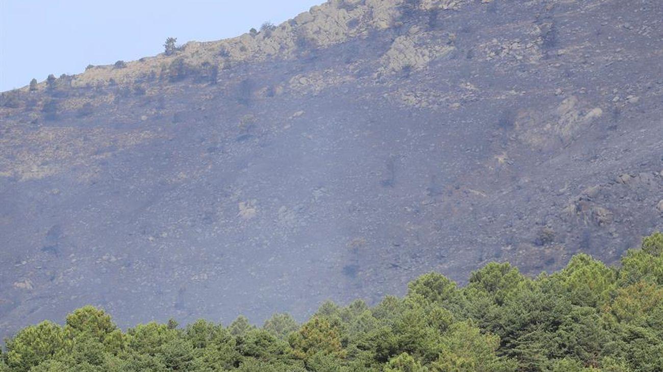 Terreno quemado en el incendio forestal de Robledo de Chavela