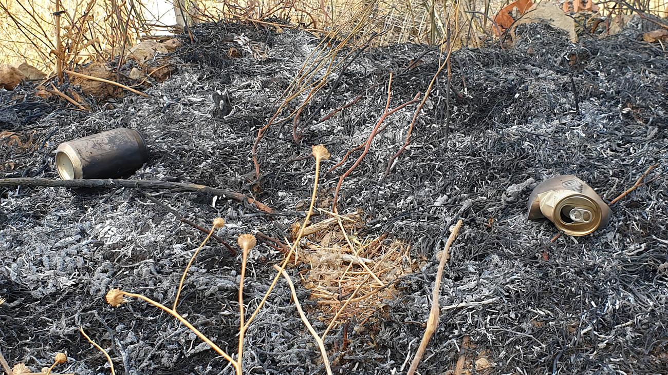 Ya no hay zonas de riesgo en el incendio forestal de Robledo de Chavela