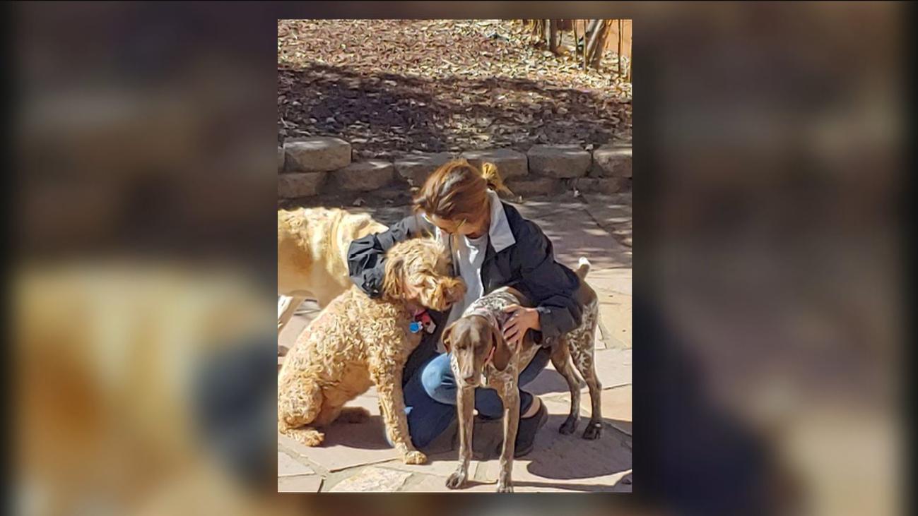 La odisea para volver a Madrid de cuatro perros perdidos en el aeropuerto de Frankfurt