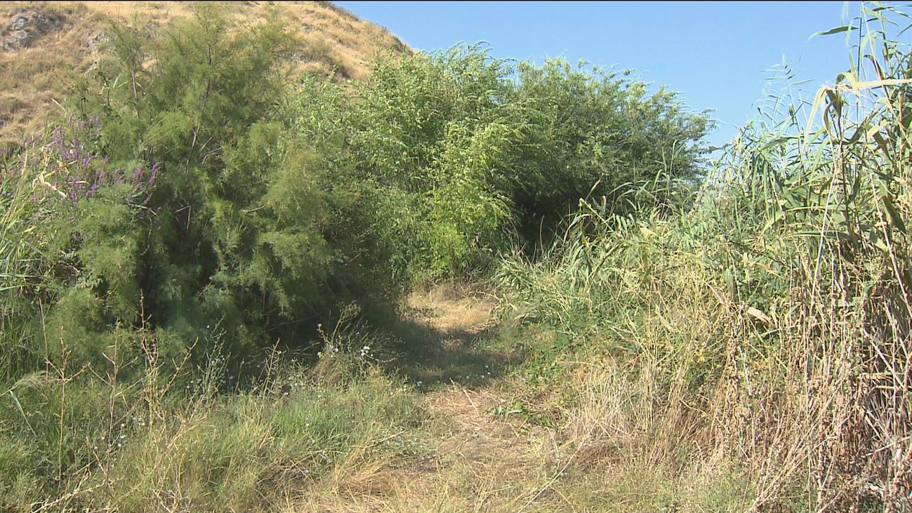 El Gobierno regional  remodelará La Laguna de San Juan  después del verano