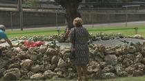 Las víctimas del accidente de  Spanair  ven una  oportunidad de conocer la verdad en el Congreso