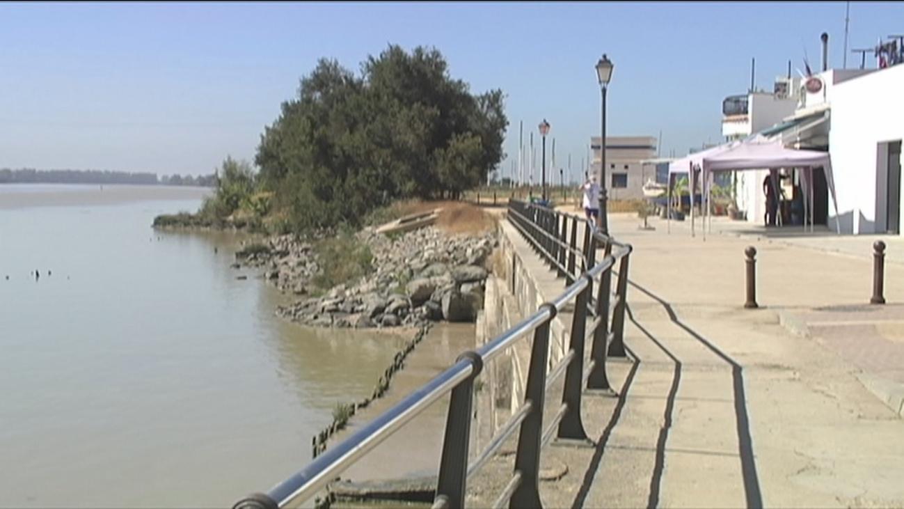 Una mujer de 85 años, segunda víctima mortal por el virus del Nilo en Sevilla